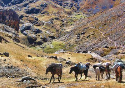 Ausangate - Cordillère des Andes