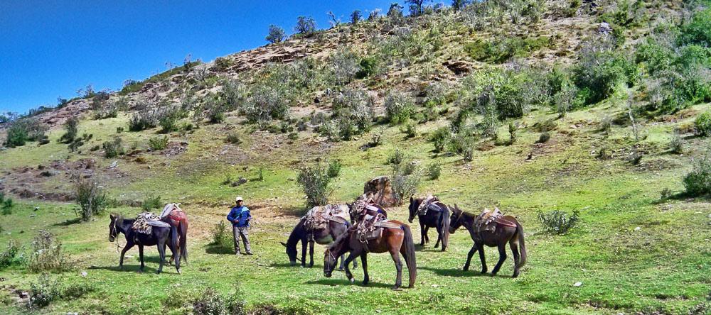 Trek Salkantay - Machu Picchu
