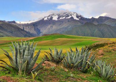Vallée Sacrée des Incas, Maras