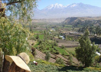 Arequipa - Panorama Chachani