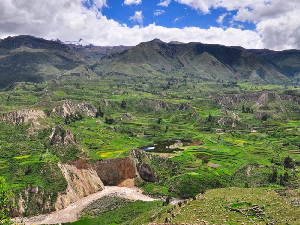Terrasses de la vallée de Colca