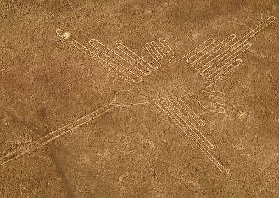 Survol des lignes de Nazca - Colibri