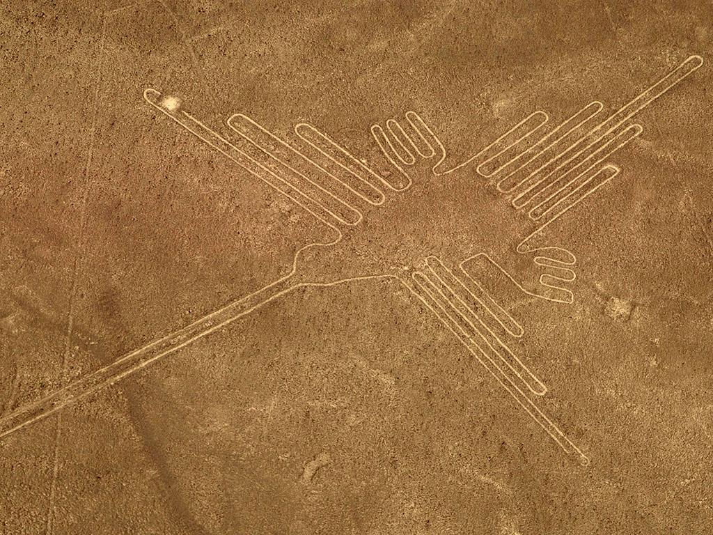 Lignes de Nazca - Colibri