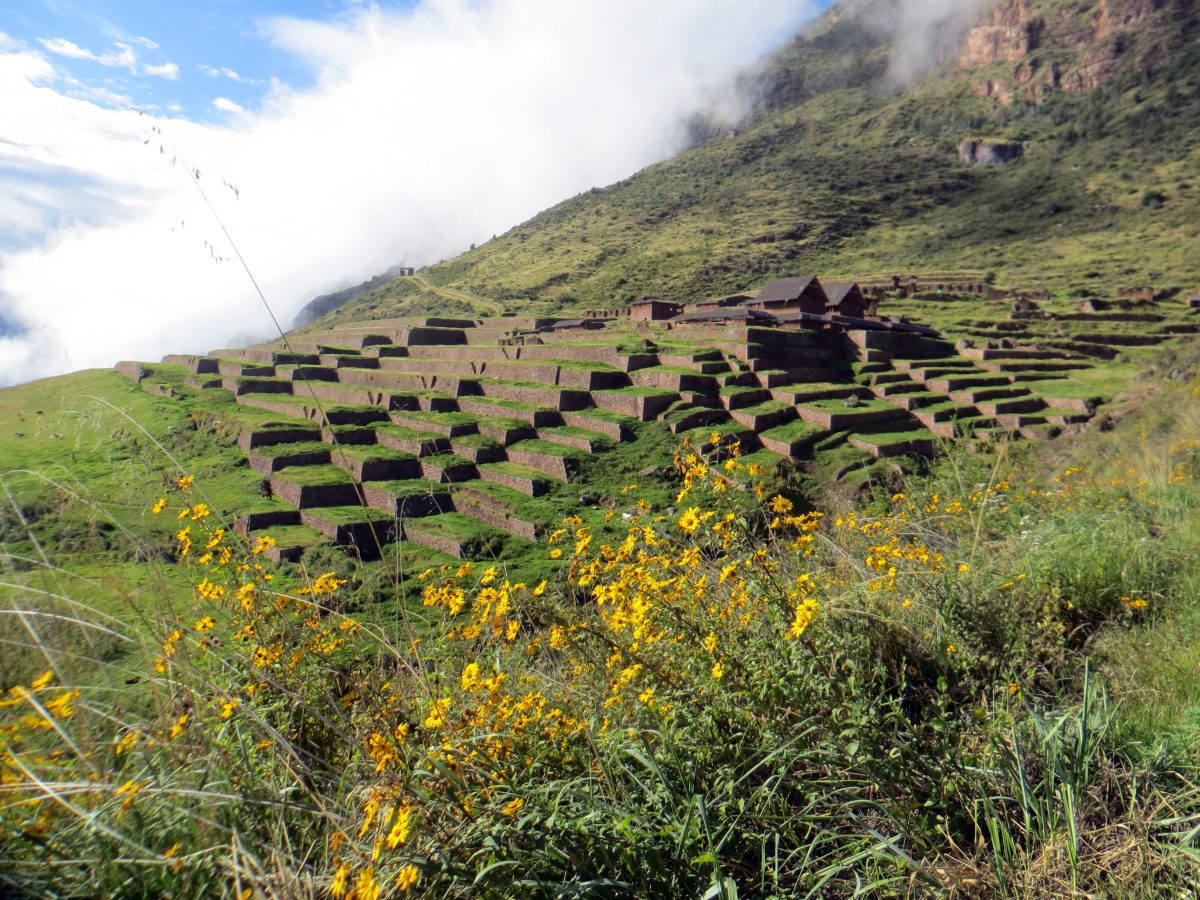 Trek Huchuy Qosco - Machu Picchu